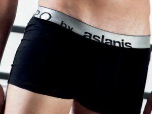 Aslanis Μποξερ